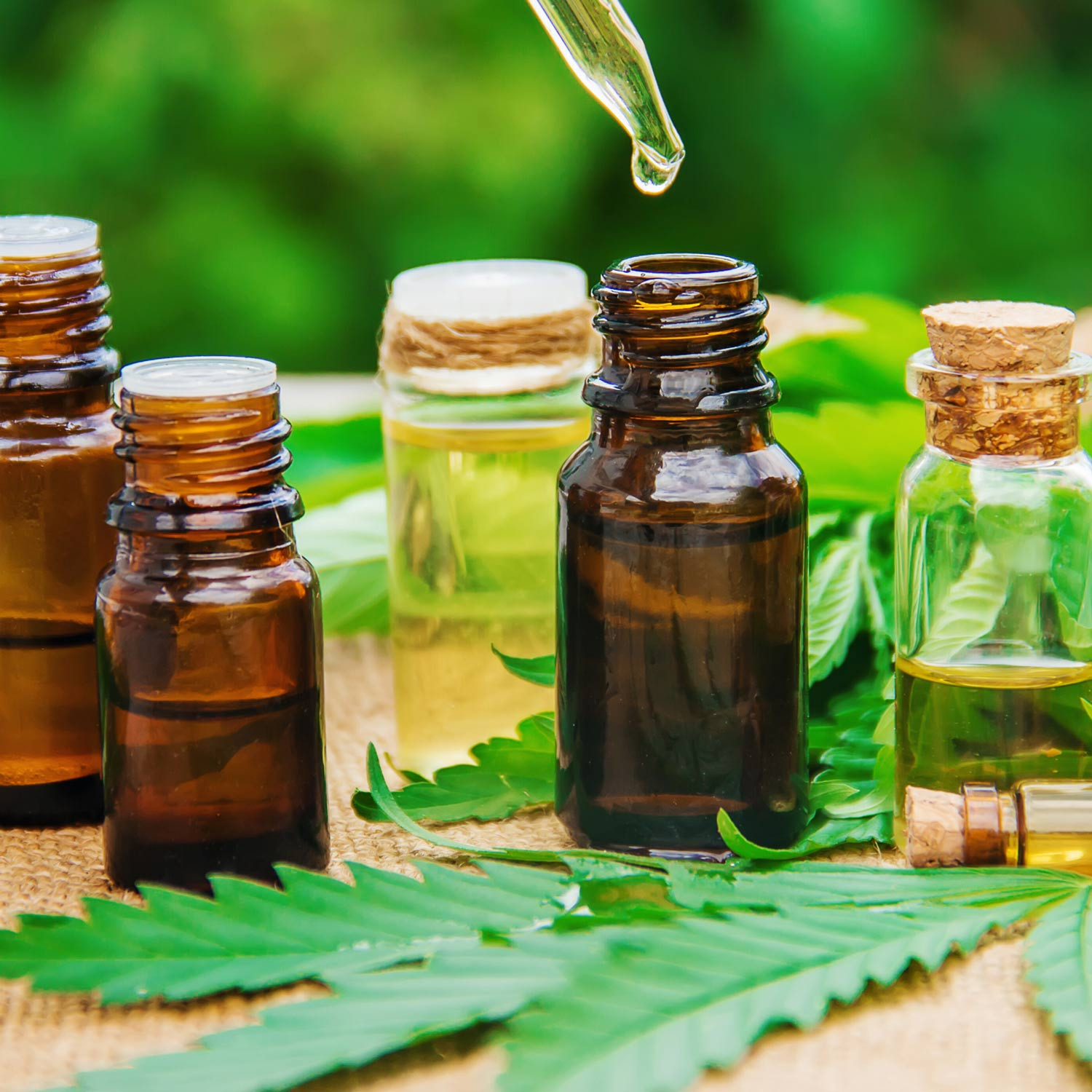 No categories Broad Spectrum CBD VS. CBD Isolate: Selecting the Best Product for You